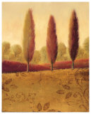 Golden Shadows II Posters by James Wiens