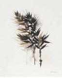 Field Study Grasses Print by Jurgen Gottschlag