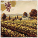 Family Estate Vineyard Prints by James Wiens