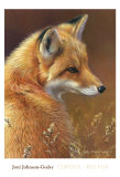 Curious: Red Fox Art par Joni Johnson-godsy