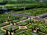 Garden at Villandry Chateau, Loire Valley, Photographic Print by David Barnes