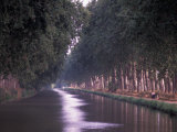 Canal du Midi, Herault, Languedoc, France Photographic Print by Nik Wheeler
