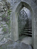 Castle Doorway, County Mayo, Ireland Photographic Print by William Sutton