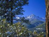 Snow Covered Trees and Sneffels Wilderness Range, Colorado, USA Fotografisk tryk af Julie Eggers