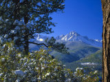 Snow Covered Trees and Sneffels Wilderness Range, Colorado, USA Photographic Print by Julie Eggers