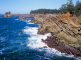 Shore Acres State Park, Oregon Coast, USA Photographic Print by Janis Miglavs