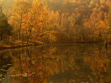 Autumn Reflections on Pond, Missouri, USA Photographic Print by Gayle Harper