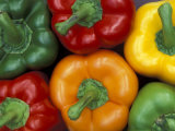 Bell Peppers, Washington, USA Photographic Print by Jamie & Judy Wild