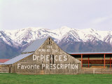 Dr Pierce's Barn, Wellsville Mountains in Distance, Cache Valley, Utah, USA Photographic Print by Scott T. Smith