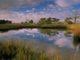 Reflection of Clouds on Tidal Pond in Morning Light, Savannah, Georgia, USA Photographic Print by Joanne Wells
