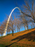 Autumn Trees Below Gateway Arch, Jefferson National Expansion, St. Louis, Missouri, USA Photographic Print by Scott T. Smith