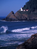 Crashing Waves and Sea Lions, Heceta Head Lighthouse, Oregon, USA Photographic Print by Brent Bergherm