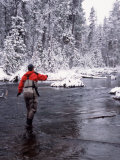 Man Fly Fishing in Fall River, Oregon, USA Photographic Print by Janell Davidson