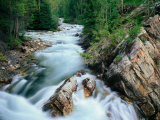 Crystal River  Gunnison National Forest  Colorado  USA