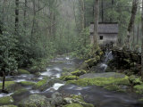 Tub Mill along Roaring Fork, Great Smoky Mountains National Park, Tennessee, USA Photographic Print by Adam Jones