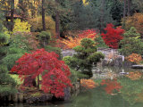 Kiri Pond and Bridge in a Japanese Garden, Spokane, Washington, USA Fotografie-Druck von Jamie & Judy Wild