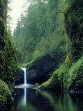 Punch Bowl Falls, Eagle Creek, Columbia River Gorge Scenic Area, Oregon, USA Photographic Print by Janis Miglavs