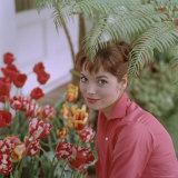 Portrait of Actress Elsa Martinelli Premium Photographic Print by Ralph Crane