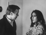 Director Franco Zeffirelli Talking with Actress Elizabeth Taylor, Who Has a Bird on Her Shoulder Premium Photographic Print by David Lees