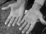 Close Up of Golfer Ben Hogan's Hands Premium Photographic Print by Martha Holmes