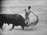 "Spanish Matador Antonio Ordonez Executing Left Handed Pass Called ""Pase Natural"" During Bullfight Premium Photographic Print by Loomis Dean"
