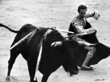 Matador Julian Marin and Bull in the Ring During a Bullfight Celebrating the Fiesta de San Ferman Premium Photographic Print by Tony Linck