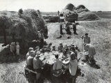 Farmers Having Lunch Brought and Served by Wives During Harvest of Spring Wheat in Wheat Farm Photographic Print by Gordon Coster
