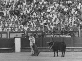 Matador Antonio Ordonez During Bullfight Premium Photographic Print by James Burke