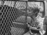 """Maria Schell Kissing """"Big Don"""" Himalayan Sun Bear Co Actor in Motion Picture Brothers Karamazov Premium Photographic Print by Leonard Mccombe"""