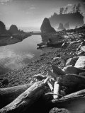 Olympic National Park Peninsula at Ruby Beach During Low Tide with a Brook Fed Pool Premium Photographic Print by Loomis Dean