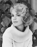 Sandra Dee Photo