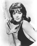 Natalie Wood Photographie