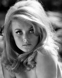 Barbara Bouchet Photo