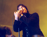 The Strokes Photo