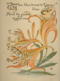 When Lilies, Turned to Tigers, Blaze/Amid Garden's Tangled Maze, Written and Drawn by Walter Crane Photographic Print