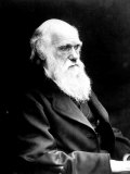 British Naturalist Charles Darwin Who Developed Theory of Evolution by Natural Selection Premium Photographic Print