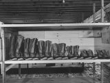 Mail Order Co. LL Bean's Famous Maine Hunting Shoes Lined Up by Size from 6 1/2 to 18 In Photographic Print by George Strock