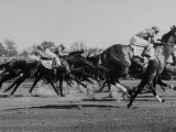 Needles in Kentucky Derby, Winner of the 82nd Running of the Most Famous of US Horse Races Photographic Print by Hank Walker