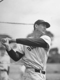 Baseball: Boston Red Sox Ted Williams Alone During Batting Practice Premium Photographic Print by Frank Scherschel