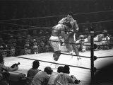 Joe Frazier Vs. Mohammed Ali at Madison Square Garden Fototryk i høj kvalitet af John Shearer