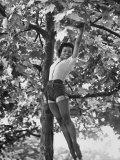 Eartha Kitt Playing in the Tree Premium Photographic Print by Gordon Parks