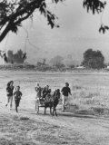 Louie Elias and Family, Riding in Their Pony Cart Premium-Fotodruck von Michael Rougier