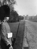 Cold Stream Guard Standing at Attention, Seen from Cambridge Gate of South Front Premium Photographic Print by Erich Salomon