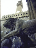 Replica of the David under Belly of Roman Lion in Piazza Della Signoria, Florence Premium Photographic Print by  Michelangelo Buonarroti