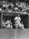 Boston Red Sox Player Ted Williams Climbing Out of the Dugout During a Game Premium Photographic Print by Francis Miller