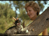 Pat Nixon, Wife of President Candidate Richard Nixon, at Home with Her Cat Premium Photographic Print by Arthur Schatz