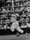 Baseball Player Orlando Cepeda Hitting a Ball Premium Photographic Print by George Silk