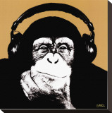 Headphone Monkey Stretched Canvas Print by Steez