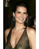 Angie Harmon Photo
