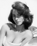 Shirley Anne Field Photo